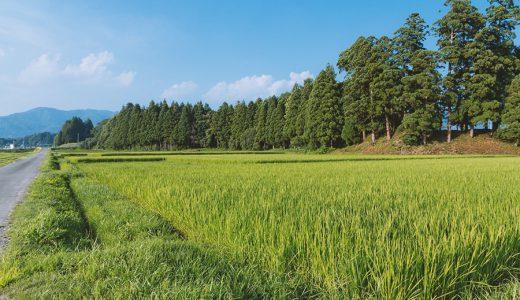 父から相続した耕作放棄地 書士費用は19万円かかったよ