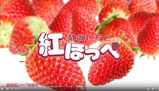 お子様のキラキラネームにならないでほしい!イチゴのブランド名まとめ