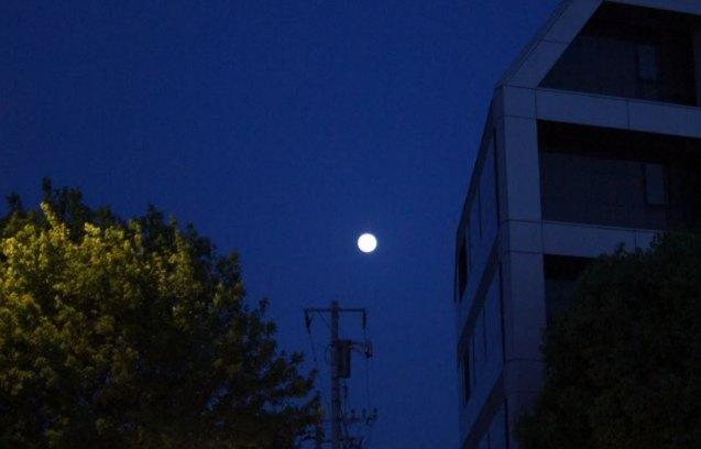 月が綺麗ですね=アイ・ラブ・ユー